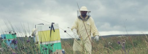 Scotland honey local beekeeper Edinburgh